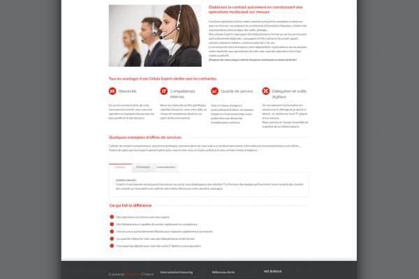 Cellules eperts ERC webdesign